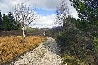 Totaig Broch approach (Caisteal Grugaig)